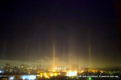 световой лес в Москве 24 декабря